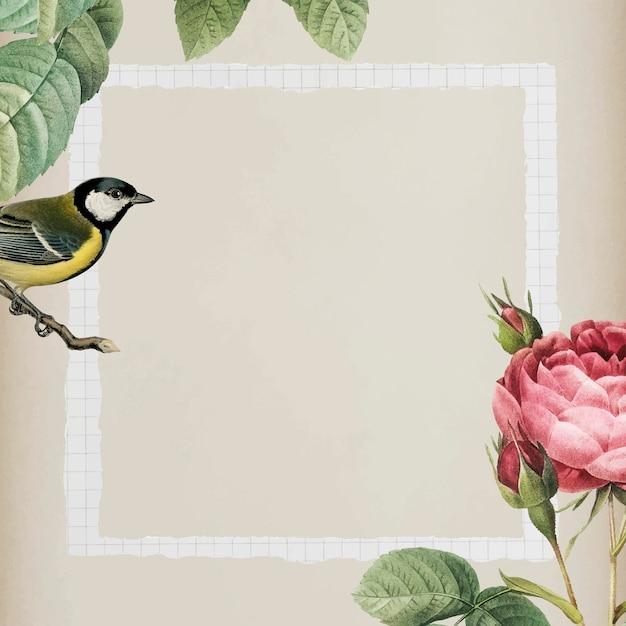 베이지색 배경에 흰색 프레임이 있는 반짝이는 로즈부시와 노란색 큰 가슴 새