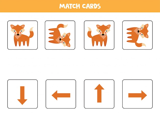 Spatial orientation for kids. cute cartoon fox in different orientation.