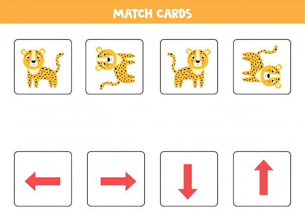 Spatial orientation for kids. cute cartoon leopard in different orientation.
