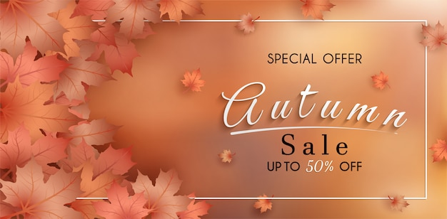 Special offer autumn. and sales banner design. with colorful seasonal fall leaves.