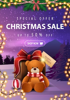 Special offer, christmas sale