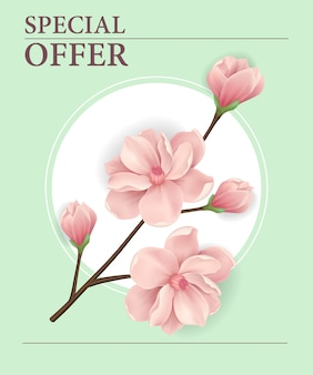 Special offer poster with pink blooming cherry tree twig in round frame
