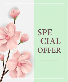 Special offer poster with pink blooming twig on light green background.