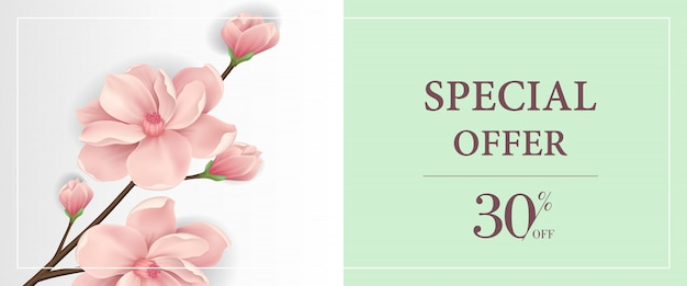 Special offer thirty percent off banner with pink blooming twig in light green background