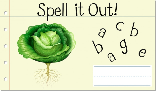 Spell english word cabbage
