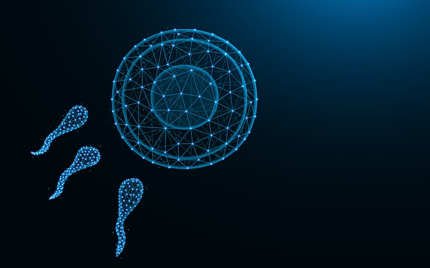 Sperm and egg made from points and lines on dark blue background, fertilization wireframe mesh polygonal  illustration