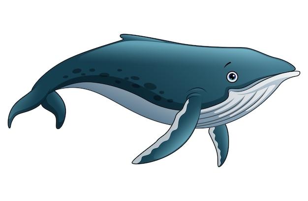 Sperm whale cartoon