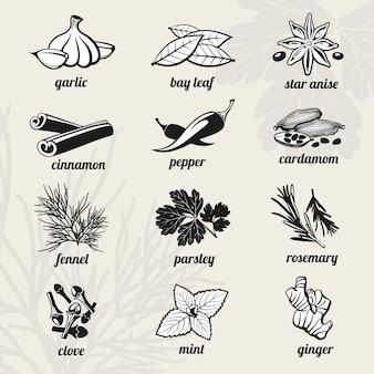 Set di elementi neri di spezie.