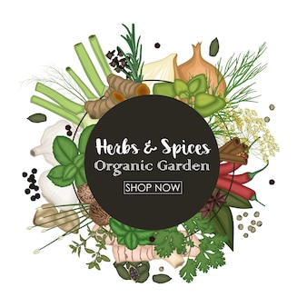 Spice and herb round frame background