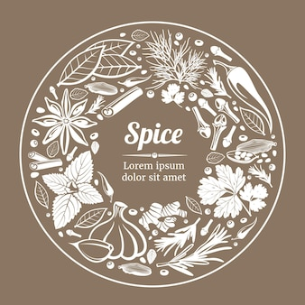 Spice plant natural organic ingredient label illustration