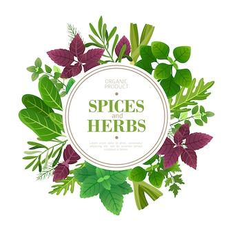 スパイスとハーブのフレーム。フレッシュハーブ料理の芳香植物。インド料理のベクトルフレーム