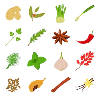 Spices craft icons set