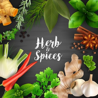Spices and herbs on the blackboard chalk background