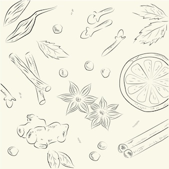Spices illustrarion
