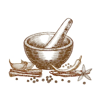 Spices and mortar with pestle hand draw sketch