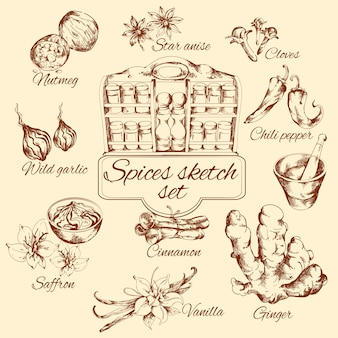 Spices sketch set