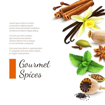 Spices on white background with text template