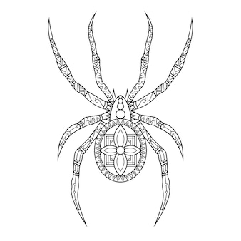 Spider drawn in doodle style