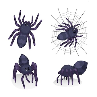 Spider illustration collection