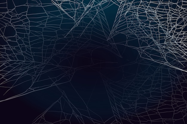 Spider web on dark background.