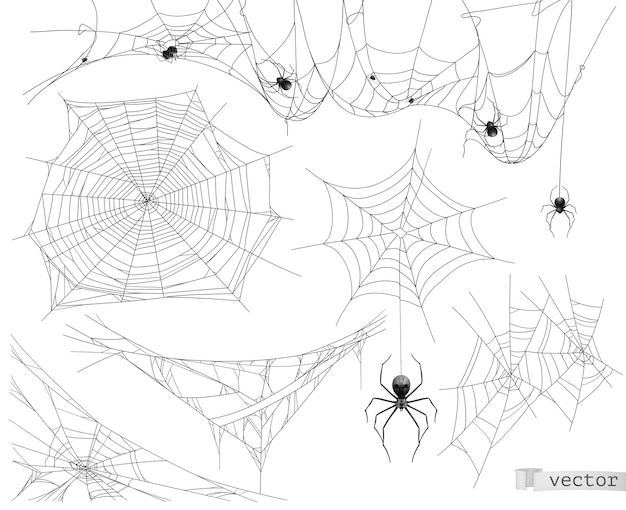 Spider web illustration set