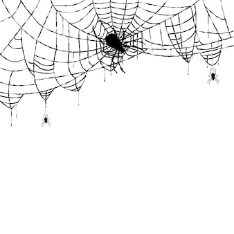 Spider and web isolated on white background. vector illustration.