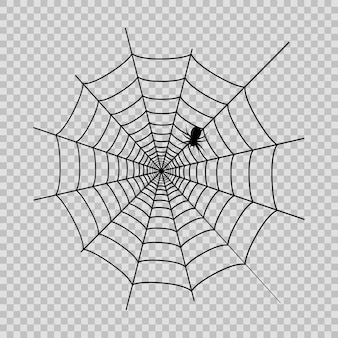 Spider web with black spider for halloween on the transaprent background. vector.