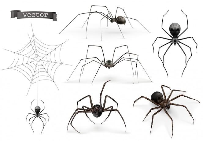 거미. 할로윈 기호, 거미줄