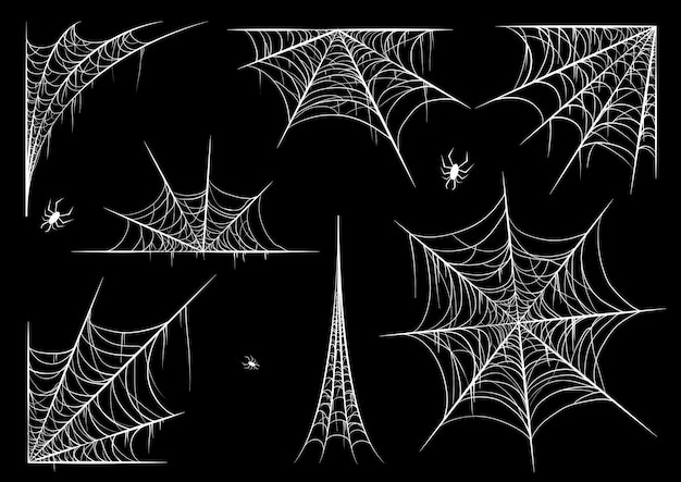 Spiderweb or cobweb for halloween set