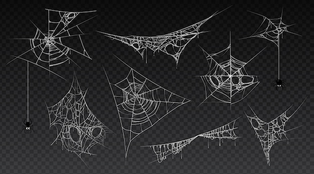 거미줄이 거미줄에 매달려 있는 거미줄은 오래되고 무서운 어둡고 빈티지한 거미줄 세트입니다.