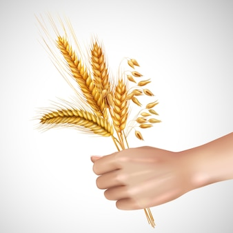 Spikelets in hand realistic composition