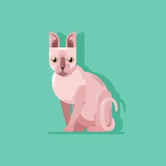 ピンクspinx catシッティングフラット