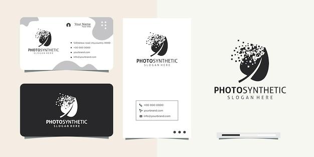 Дизайн логотипа splash leaf и визитная карточка