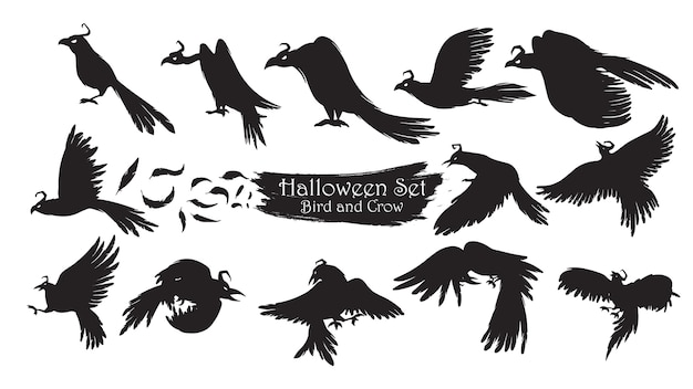 Spooky crow silhouette collection of halloween