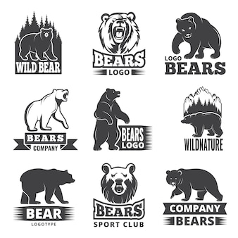 Sport labels with illustrations of animals. pictures of bears for logo design
