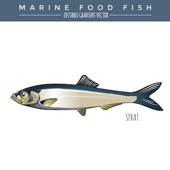 スプラット。海産魚