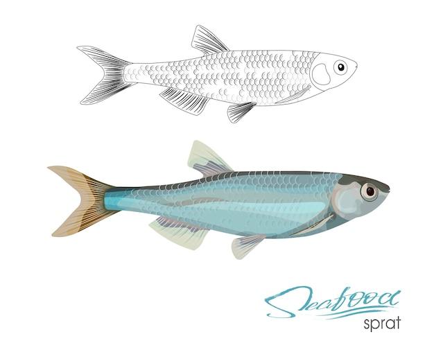 Килька эскиз рыбы значок изолированные морской атлантический океан шпроты линейный силуэт морской рыбы