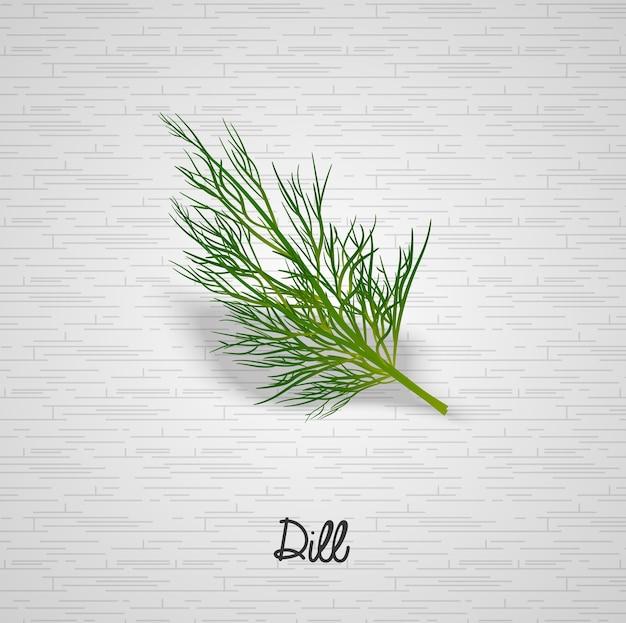 Sprig of dill illustration