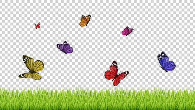 春の背景。リアルな草、色の飛ぶ蝶。孤立した緑の牧草地のイラスト。