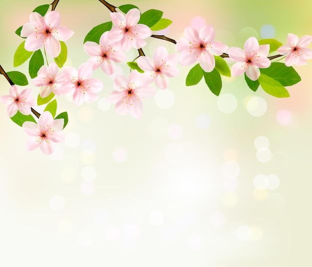 봄 꽃이 만발한 나무 브런치 봄 배경.