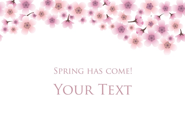 Spring background with cherry blossoms in full bloom and sample text template