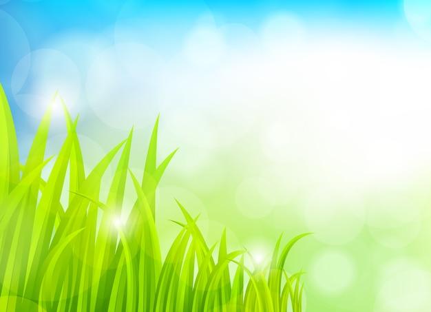 草と春の背景
