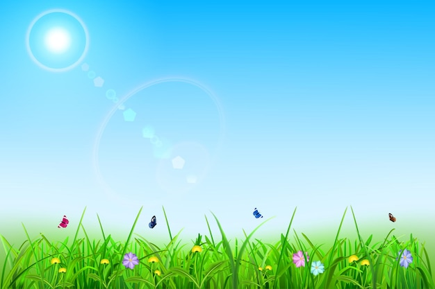 Spring background with sky, sun, grass, flowers and butterflies