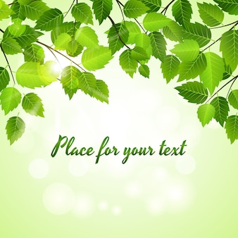 Spring background with vector green leaves arranged as an upper border above a sparkling bokeh of sunlight with copyspace for your text