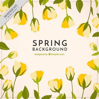 黄色の花で春の背景