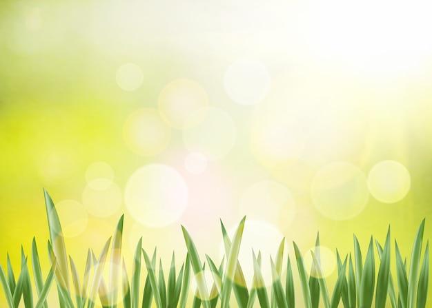 Весенний фон.
