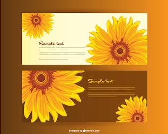 Sunflower Background Vectors Photos And PSD Files