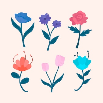 Spring blooming flowers isolated on pink background