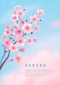 봄 벚꽃 프리미엄 벡터