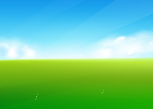 Spring field nature background with green grass landscape, clouds, sky.